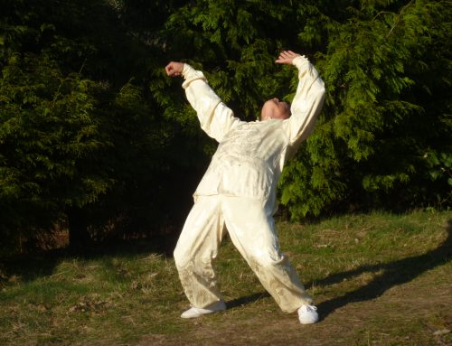 Advanced Tai chi